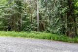 0 Tani Creek Lot L1 Road - Photo 9