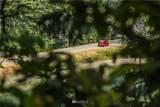 10056 Brush Arbor Lane - Photo 36