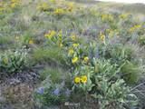 5090 Osburn Canyon Road - Photo 33