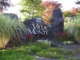 10911 Villa Monte Drive - Photo 30