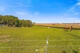 5024 Mcconihe Road - Photo 16
