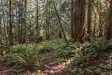 134 Deer Tracks Road - Photo 5