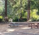 151 Park Loop - Photo 22