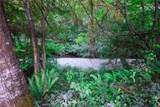 123 Trap Creek Lane - Photo 21