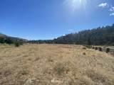 180 Gold Creek Loop Road - Photo 12