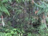 9999 Emerald Forest Lane - Photo 9