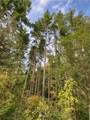 0 Emerald Forest Lane - Photo 5