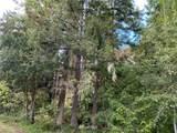 0 Emerald Forest Lane - Photo 7