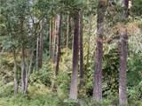 0 Emerald Forest Lane - Photo 9