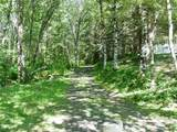 317 Butte Creek Road - Photo 17
