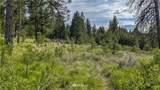 1005 Frosty Creek - Photo 23