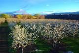 100 Malaga Alcoa Hwy - Photo 39