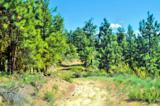 0-NNA Cottontail Lane - Photo 8