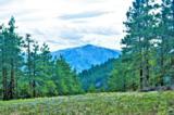0 Cottontail Lane - Photo 10