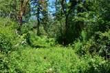 5 Rainier - Photo 4