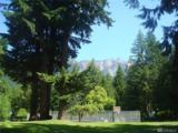 7103 Guy Peak - Photo 21