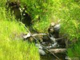 0-TBD Longhorn Dr - Photo 5