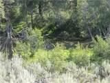 111 Tbd Palmer Mountain Road - Photo 19