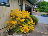 4342 Cloquallum Road - Photo 39