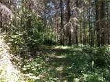0 Bear Claw Lane - Photo 14