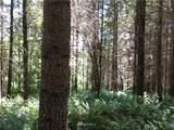 0 Bear Claw Lane - Photo 17