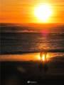 6 Dune Crest Drive - Photo 12