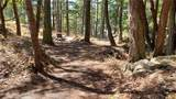 891 Chinook Way - Photo 8