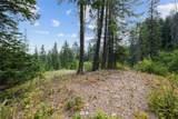 740 Kiias Elk Trail - Photo 12
