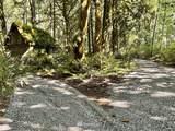 21104 Lake Riley Road - Photo 1