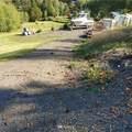 0 Tanglewood Drive - Photo 6