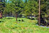 0-NNA 24 Cottontail Lane - Photo 7