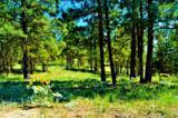 0 Cottontail Lane - Photo 1