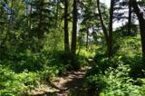 6 Rainier - Photo 1