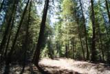0 Newby Creek Rd - Photo 17