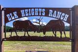331 Elk Heights Road - Photo 2
