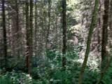 0 Bear Claw Lane - Photo 11