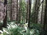 0 Bear Claw Lane - Photo 16