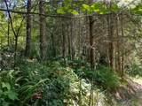 0 Bear Claw Lane - Photo 9