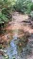 4972 Hawks Nest Lane - Photo 35
