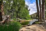 40 Lower Bear Creek Road - Photo 34