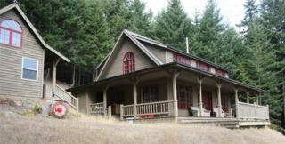 178 Harmon Ranch Rd, Decatur Island, WA 98221 (#831241) :: Ben Kinney Real Estate Team