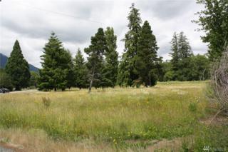 294353 Highway 101, Quilcene, WA 98376 (#1002254) :: Ben Kinney Real Estate Team