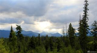 0-Lot 6 Mahonia Dr, Cle Elum, WA 98922 (#1002430) :: Ben Kinney Real Estate Team