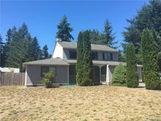3735 Vassar Lp SE, Lacey, WA 98503 (#1003911) :: Ben Kinney Real Estate Team