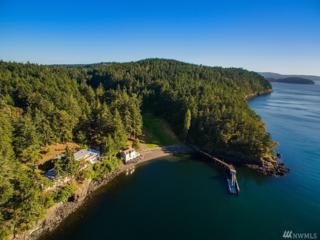 945 Cormorant Bay Rd, Orcas Island, WA 98245 (#1004812) :: Ben Kinney Real Estate Team