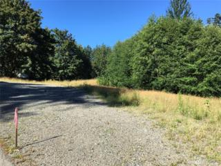 4829 56th Ave NW, Gig Harbor, WA 98335 (#1005129) :: Ben Kinney Real Estate Team