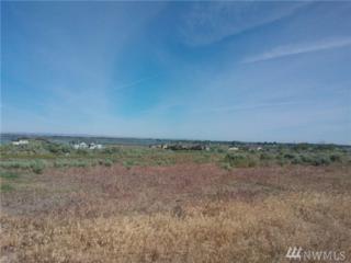 8296 Dune Lake Rd SE, Moses Lake, WA 98837 (#1005539) :: Ben Kinney Real Estate Team