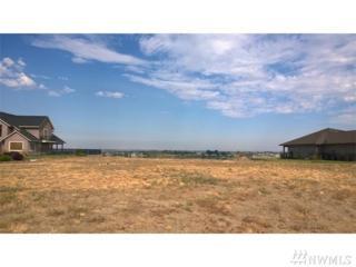 600 Viewmont Dr SE, Moses Lake, WA 98837 (#1005544) :: Ben Kinney Real Estate Team