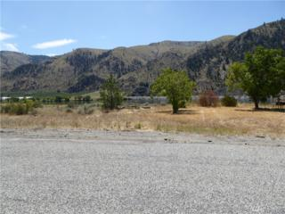 424 Stayman Flats Rd, Chelan, WA 98816 (#1005917) :: Ben Kinney Real Estate Team