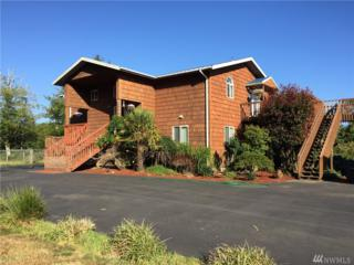 83 Ocosta Third, Ocosta, WA 98520 (#1006140) :: Ben Kinney Real Estate Team